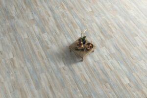 Stejar Abergele inchis